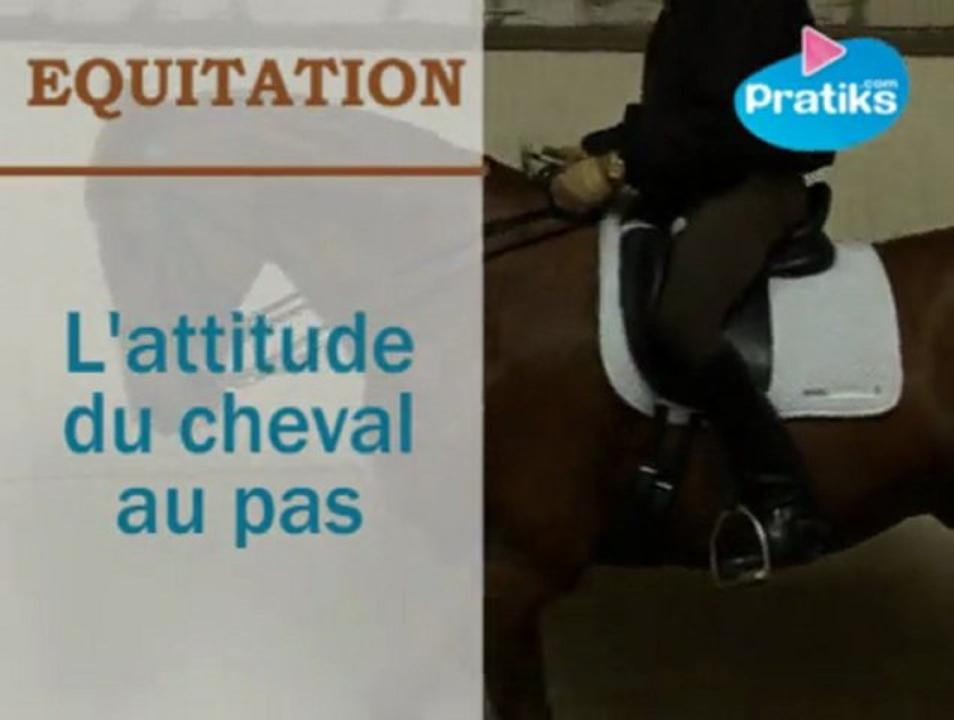 l 39 attitude du cheval au pas en dressage pratiks. Black Bedroom Furniture Sets. Home Design Ideas