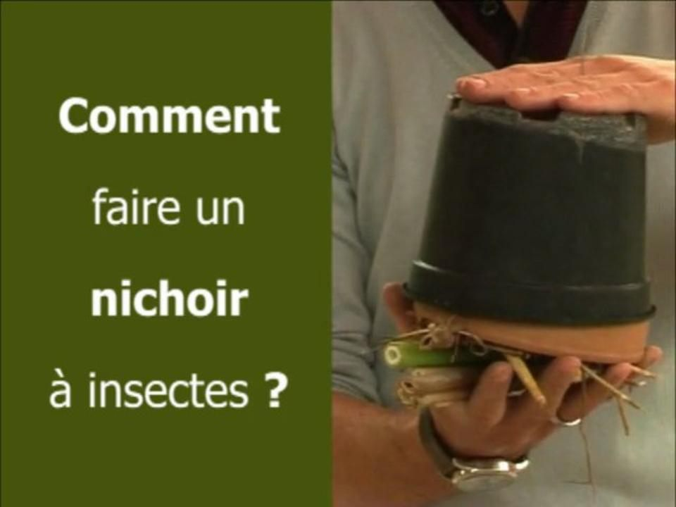 Comment faire un nichoir à insectes ?