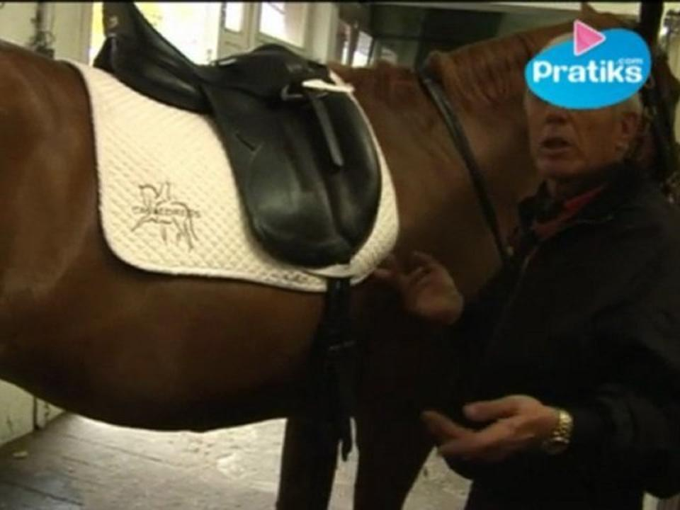 Equitation - Comment seller un cheval ? (Selle de dressage)